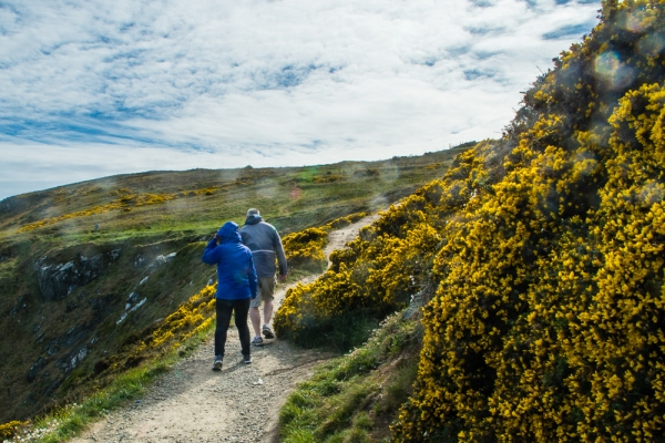 One Day in Howth, Ireland | Enjoy a day of sightseeing, eating, relaxing and hiking just a quick train ride from Dublin, Ireland.